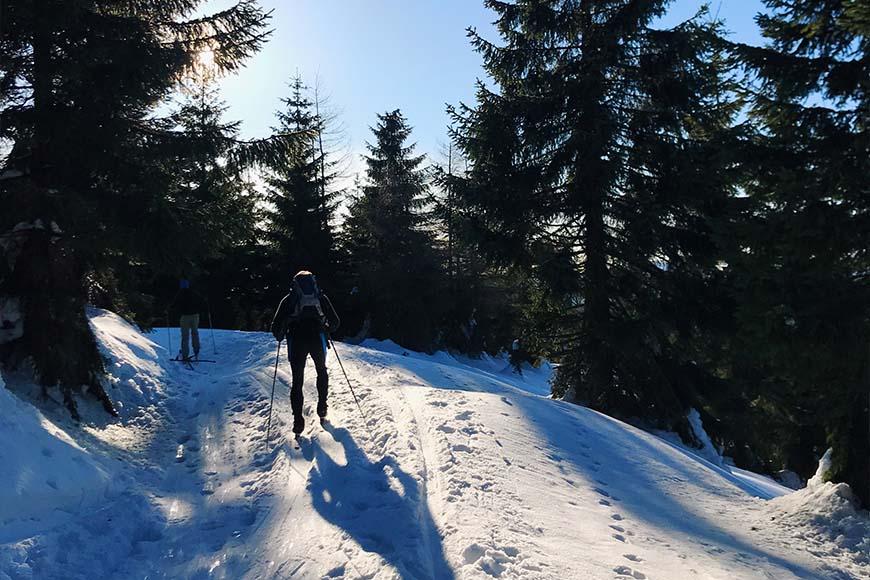 Droga, trasa narciarska w Jakuszycach, zdjęcie Sara Dziuba, blog SunSeasons24