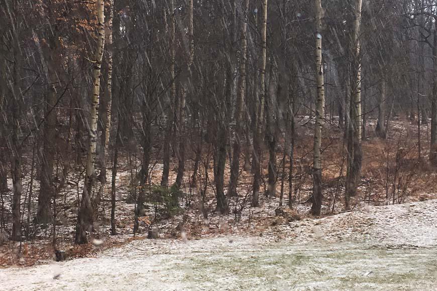 Spacer w deszczu, zdjęcie Zbigniew Pasieka blog SunSeasons24