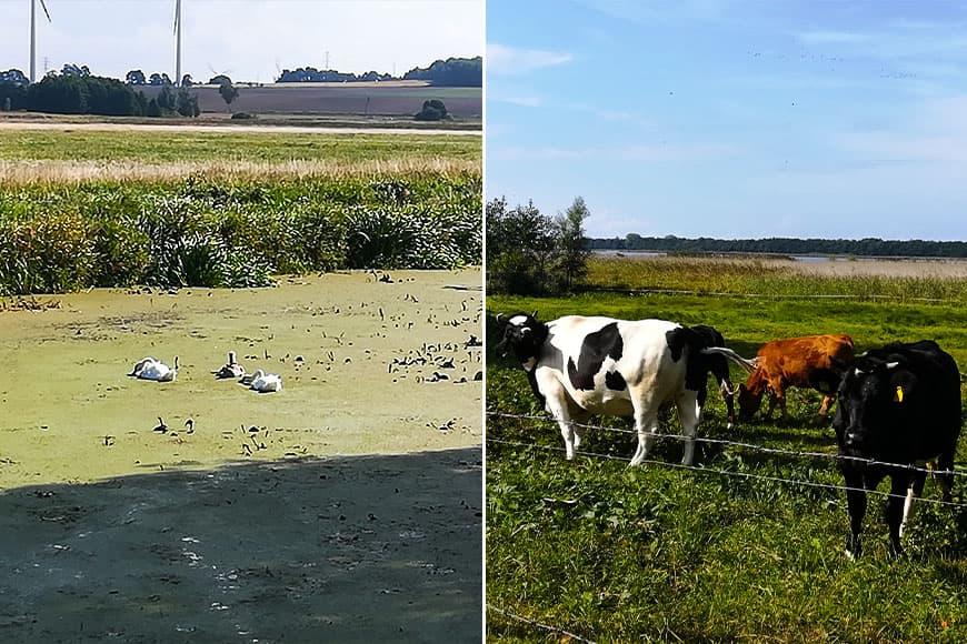 Na zielonym szlaku zdjęcia Zbigniew Pasieka blog SunSeasons24