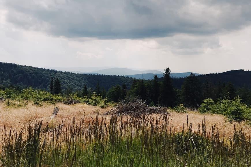 Trasa na Klimczok. Zdjęcie Sara. Blog SunSeasons24