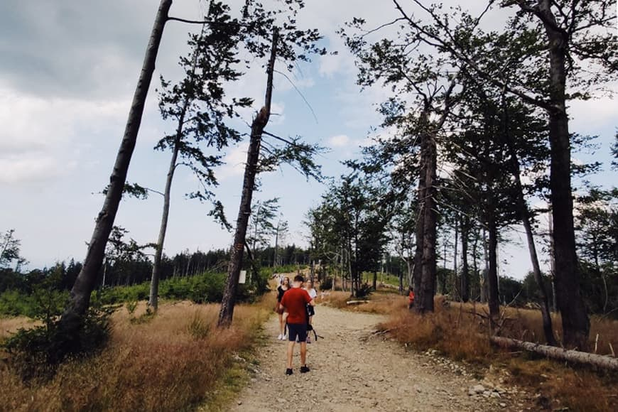 Trasa na Klimczok, na szlaku. Zdjęcie Sara. Blog SunSeasons24