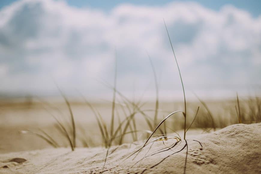 plaża zdjęcie do wpisu ochrona przed słońcem blog SunSeasons24